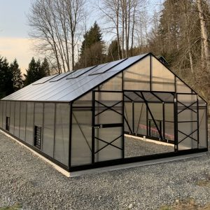 Tropic 16x33 for Winery Tasting Room in Woodinville 2_1